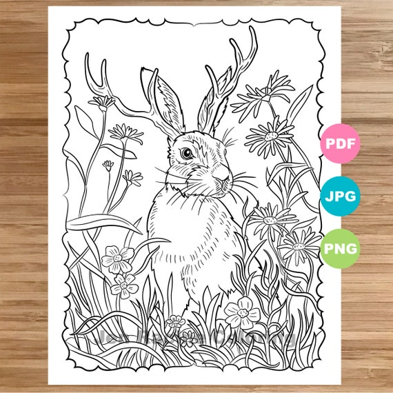 Jackalope Coloring Page Animal Art Magical Animal Coloring Etsy