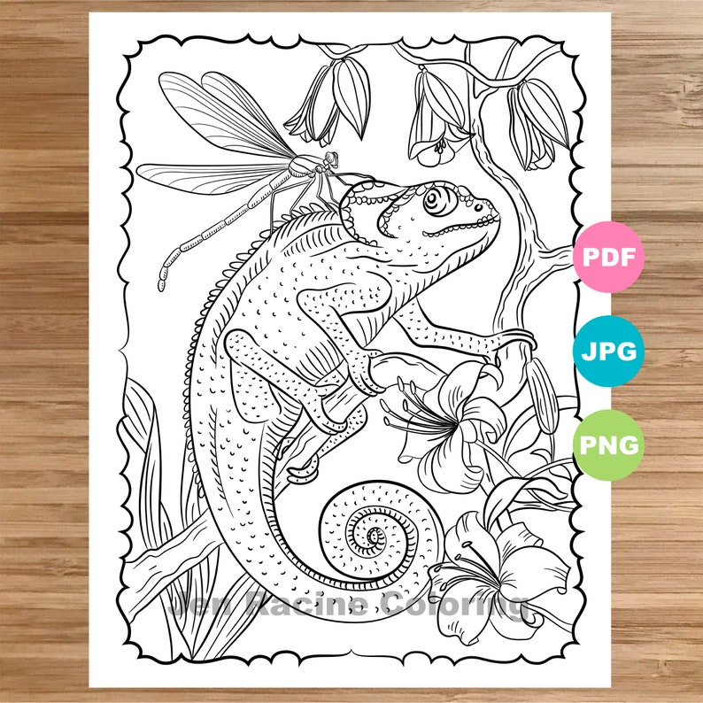 Chameleon Coloring Page, Animal art, Coloring book printable, Coloring  pages for adults, Coloring pages for kids