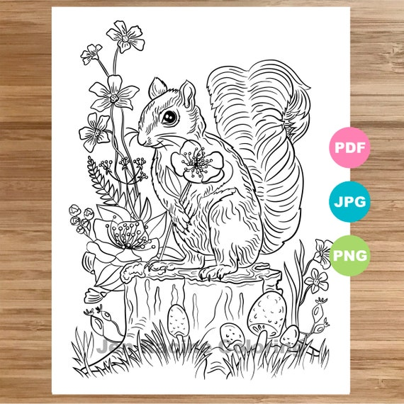 - Squirrel Coloring Page Magical Animal Animal Art Coloring Etsy