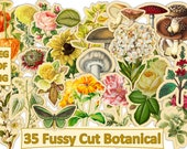 Printable Fussy Cut Botanicals Ephemera for Journals and scrapbooks. JPEG, PDF and Clipart PNG format. Commercial Use
