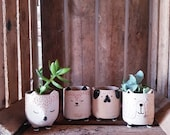 Cute little animal planters - 6cm - pick from a selection of 4 - pug cat bear fox