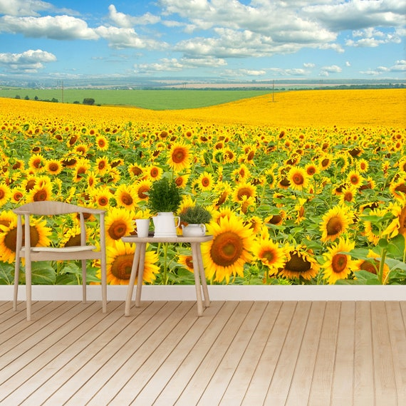 Sunflower Field Traditional Or Removal Wallpaper Wall Mural Sunflower Field And Cloudy Blue Sky Reusable Photomural Traditional Photo