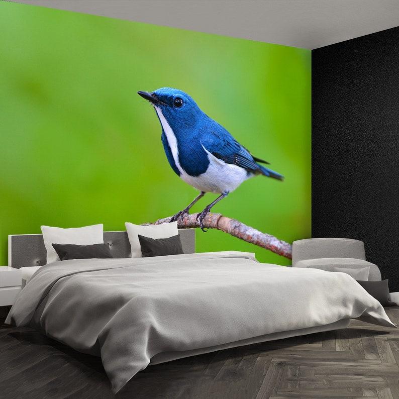 Flycatcher Bird reusable or traditional photo wall mural Ultramarine flycatcher wallpaper Beautiful colorful bird perching on a branch