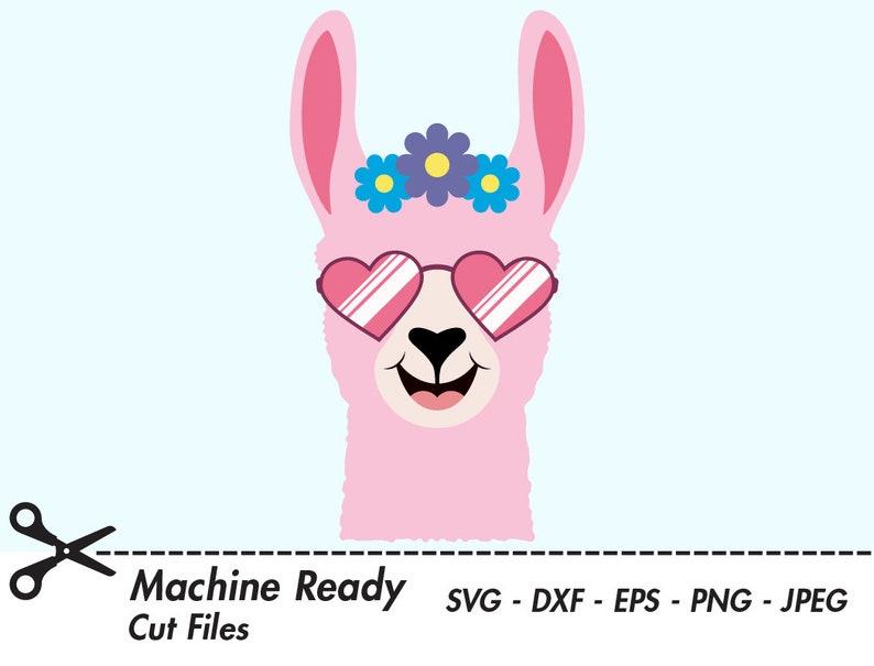 Cute Llama SVG Cut Files, PNG llamas clipart, farmhouse clip art, happy  llama face, girl, printable ranch animal vector, llama head, shades