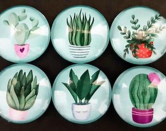 Cute Houseplant Glass Fridge Magnets,1 Inch,  Set of 6