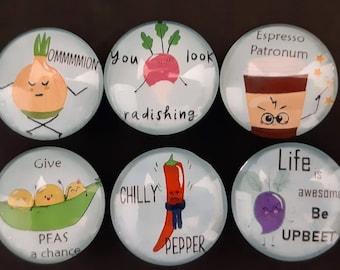 Funny Vegetable Glass Magnet Set