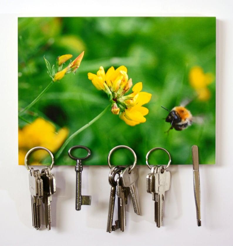 Magnet keyboard image FreeBee 15 x 20 cm 5 image 0