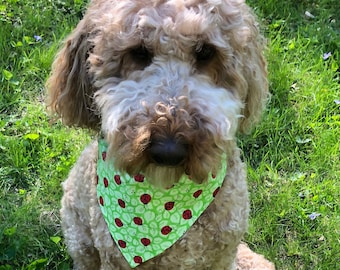 Ladybug reversible dog bandana, Free Shipping, pet/cat bandana, over collar bandana, slide on collar bandana