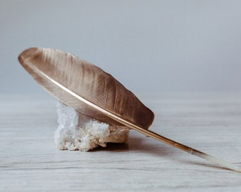Incense feathers, ritual feathers, bird feathers, goose feathers - gold, hair decoration, decoration, autumn decoration, rough nights