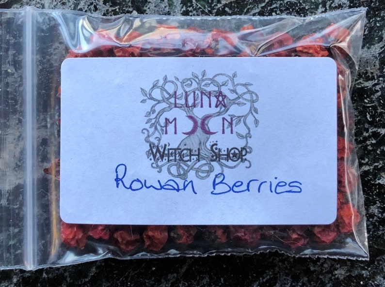 Rowan Berries Dried Herbs Protection Witchcraft Pagan image 0