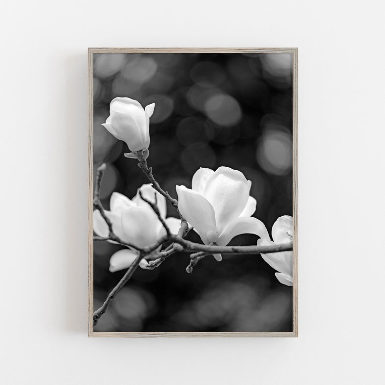Black And White Magnolia Flower Print Floral Wall Art Print Etsy