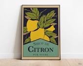 Vintage Lemons Poster | Retro Posters | Vintage Prints | Printable Wall Art | Vintage Advertising | Vintage Art Prints | Wall Decor