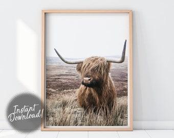 Cow print   Etsy