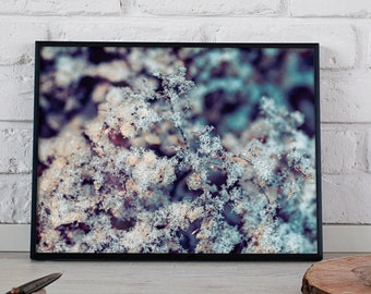 DIGITAL photo print for the living room and office- home decoration- Frozen Flowers