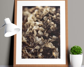 DIGITAL photo print for the living room and office- home decoration- Winter petals
