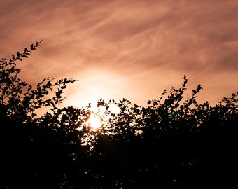 Digital photography printable- Print it yourself - Burning skies - Silhouetted nature