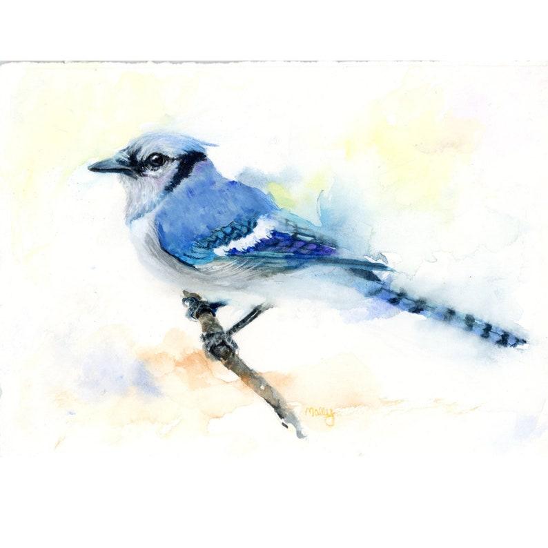 Blue Jay Art Giclee Blue Wall Art Blue Jay Art Print image 0