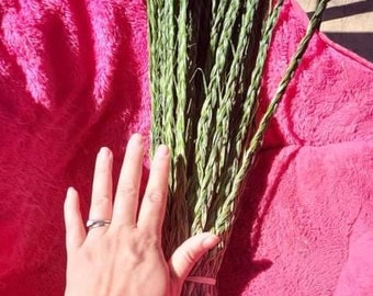 Traditional Sweetgrass braids 21 strands**
