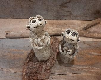 Meerkat's heart salute