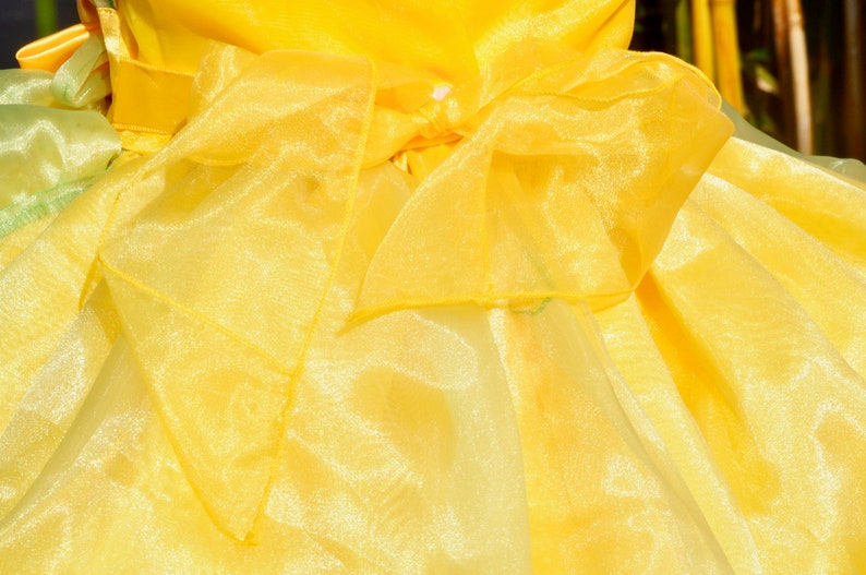 princess halloween costume Disney trip birthday dress Tiana Dress Princess dress Princess and the frog costume princess gown