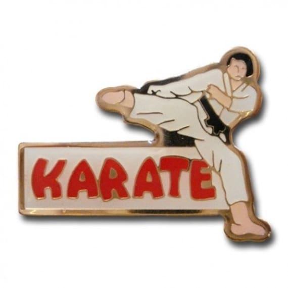 Tang Soo Do Martial Arts Pin