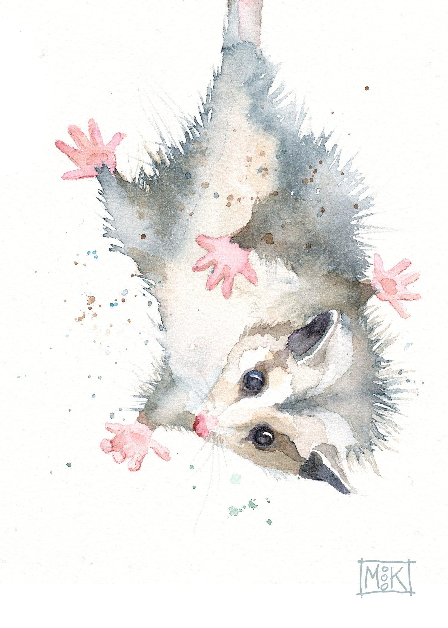Opossum Art Print Baby Possum Watercolor Print Cute ...