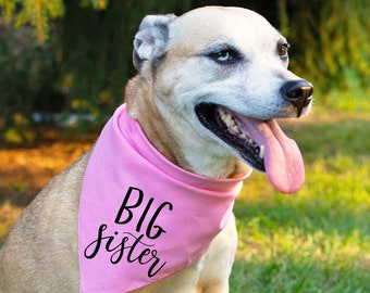 edb5cb1fa4d Cute Big Sister Dog Bandana Baby Announcement Pregnancy Announcement Family  Pictures Family Photos Aesthetic Dog Lover Gift