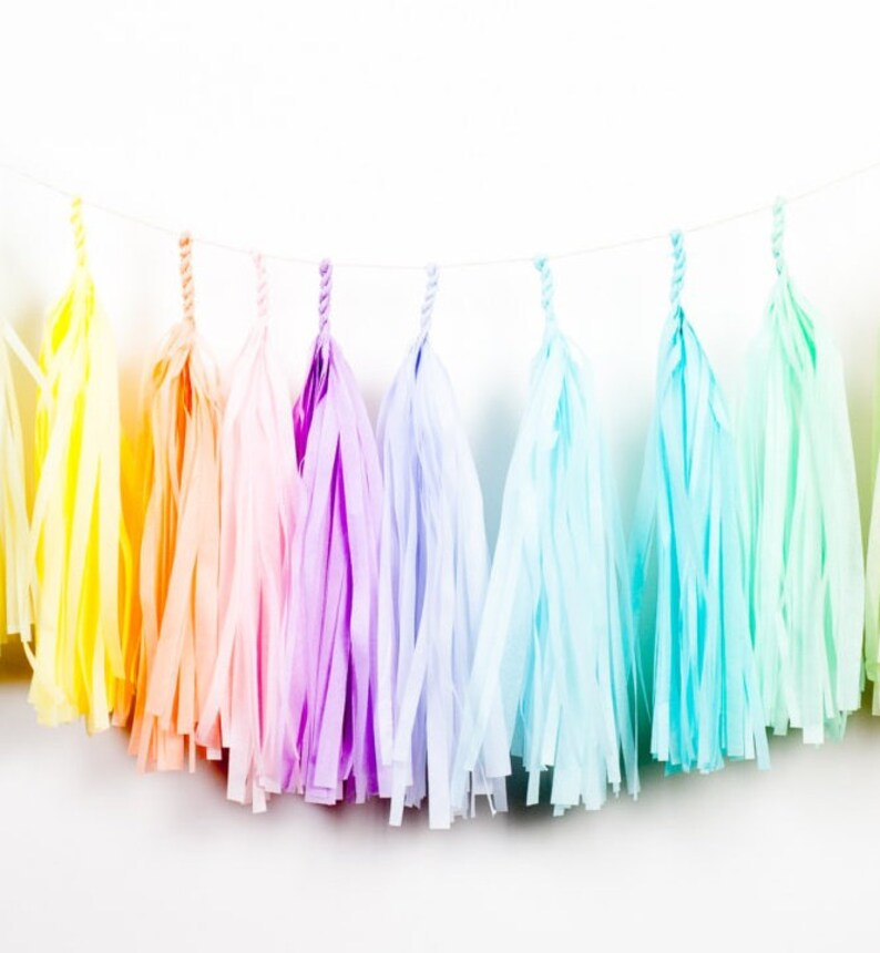 Craft colorful pastel rainbow fringes garland for the room image 0