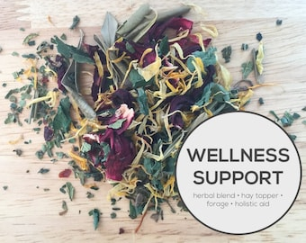 Wellness Support Herbal Blend | Organic Hay Topper, Forage, Nesting Herbs | Bunny Rabbit, Guinea Pig, Chinchilla, Gerbil, Hamster, Chicken
