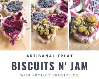 Biscuits n' Jam Probiotic Treats | Organic Healthy Treat | Bunny Rabbit, Guinea Pig, Chinchilla, Gerbil, Hamster, Rat, Mouse, Chicken