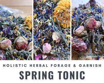 Spring Tonic Herbal Blend | Liver, Kidney, Lymphatic Support | Organic Hay Topper, Forage | Bunny Rabbit, Guinea Pig, Chinchilla, Gerbil