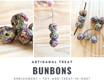 BunBons | Oat-Free! | Treat and Toy in One! | Organic| Bunny Rabbit, Guinea Pig, Chinchilla, Gerbil, Hamster, Rat, Mouse, Chicken