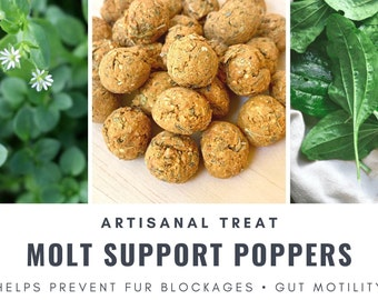 Molt Support Poppers | Helps Prevent Fur Blockages | Organic Healthy Treat | Bunny Rabbit, Guinea Pig, Chinchilla, Gerbil, Hamster, Rat