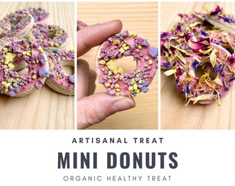 Mini Donut Treats | Organic Healthy Treat | for Bunny Rabbit, Guinea Pig, Chinchilla, Gerbil, Hamster, Rat