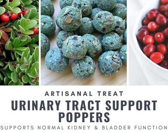 Urinary Tract Support Poppers | Decrease Bladder Sludge | Organic Healthy Treat | Bunny Rabbit, Guinea Pig, Chinchilla, Gerbil, Hamster, Rat