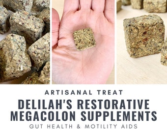 Delilah's Restorative Megacolon Supplements | Gut Health | Motility Aid | Bunny Rabbit, Guinea Pig, Chinchilla, Gerbil, Hamster, Rat, Mouse