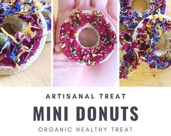 Mini Donut Treats   Organic Healthy Treat   for Bunny Rabbit, Guinea Pig, Chinchilla, Gerbil, Hamster, Rat
