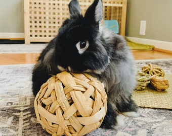 Water Hyacinth Ball Chew Toys | All-Natural |  Safe | Non-Toxic | Handmade | Bunny Rabbit, Guinea Pig, Small Pet Toys