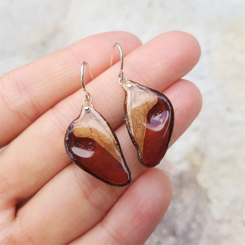 Hakea Seed Pod Earring Sterling Silver Earrings Gold image 0