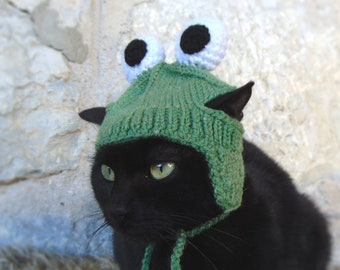 4ab88bad7f1 Frog Hat for Cat