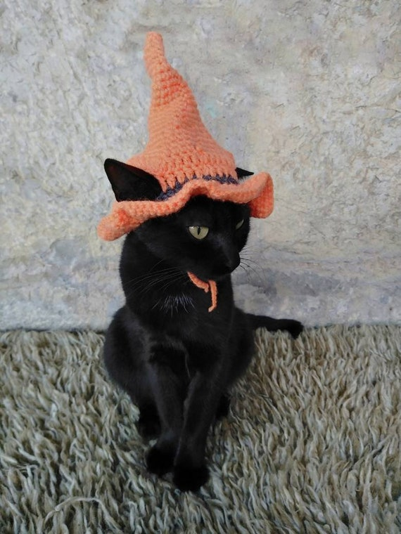 Witch Hat For Cat Pet Costume Cat Halloween Costume Pet Etsy