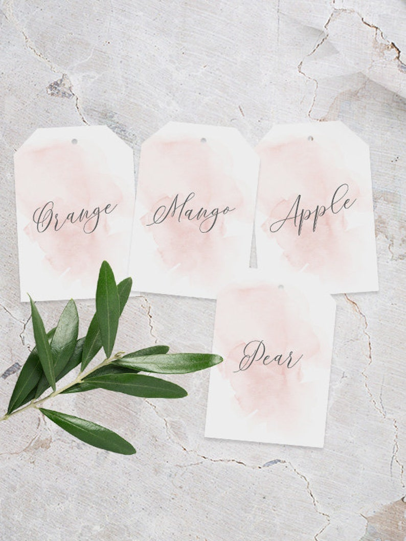 Hanging Juice Tags INSTANT DOWNLOAD, Mimosa Bar Tags, DIY Printable  Decorations, Templett Editable pdf, Food Tags, Baby Shower, Pink