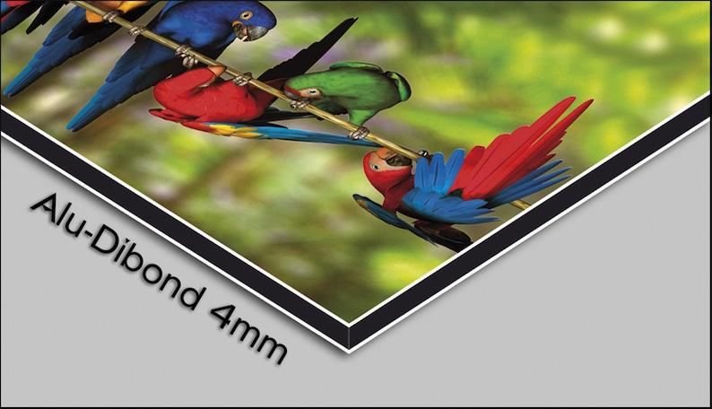 fusionné en verre rouge designer horloge murale moderne horloge murale se trouve calme pas tic-tac dixtime 3D-0183