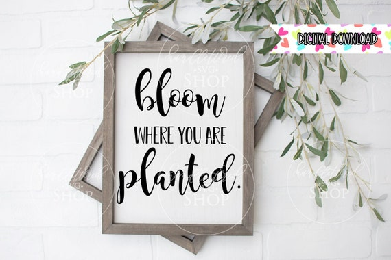 Bloom Where You Are Planted Svg Png Eps Jpg Dxf Cricut Etsy