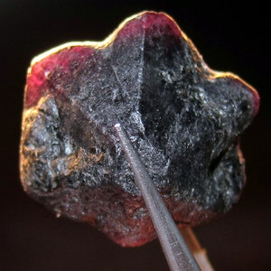 M25 ALEXANDRITE 49.3 CARAT NATURAL Rough Collector\u2019s Crystal Mineral Gem
