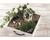 Mini garden for self-build, wedding, money gift, anniversary, birthday, 7-piece, garden small size, fairy garden for children, mini garden
