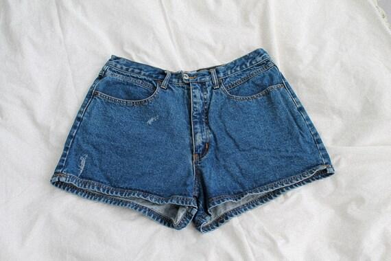 Vintage Jean Shorts/ Vintage Denim / High Waisted