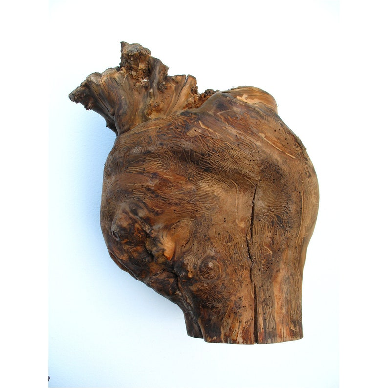 Tree root as a decoration made of pear wood 26 x 36 cm image 0