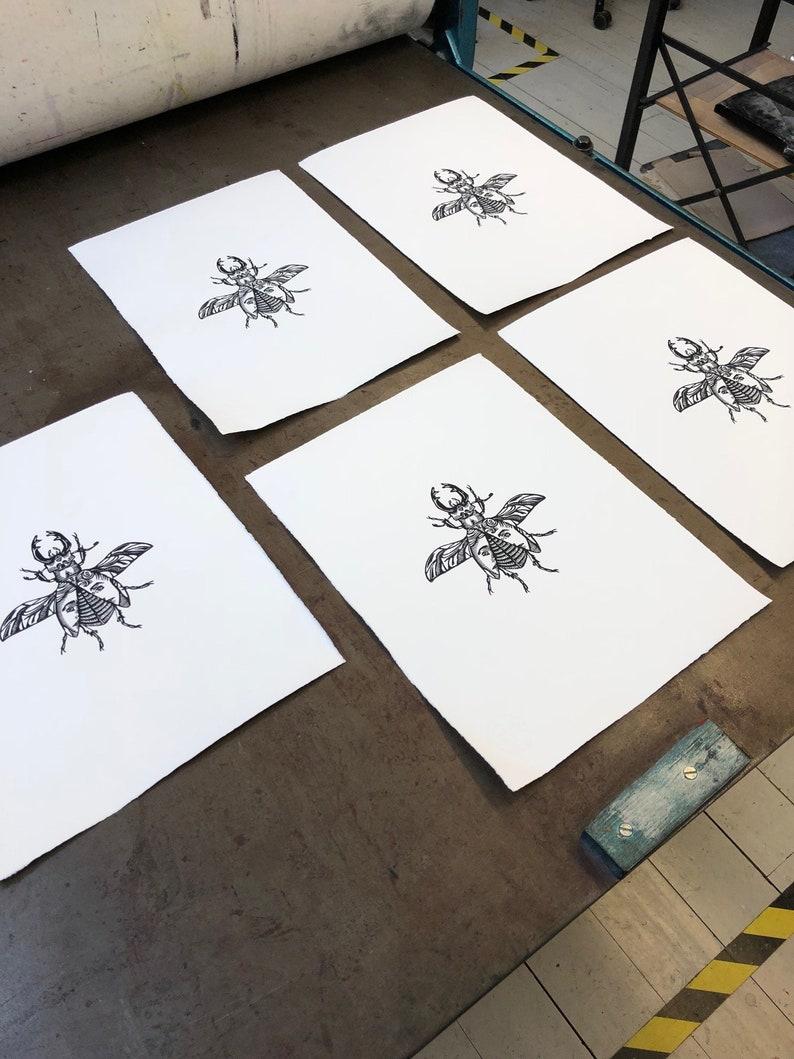 L Limited Linoleum Edition Linocut Block Handprinted on Hahnem\u00fchle Paper Cervus