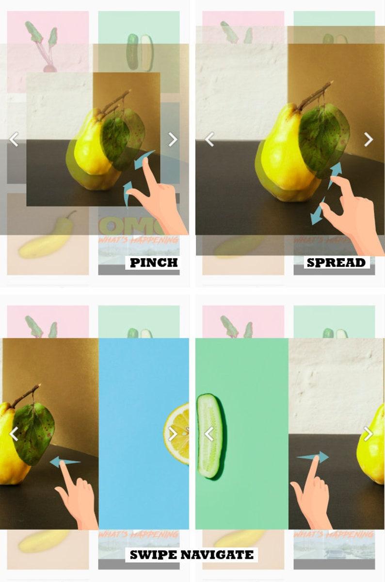 Squarespace Plugin: Pinch zoom Lightbox image 0